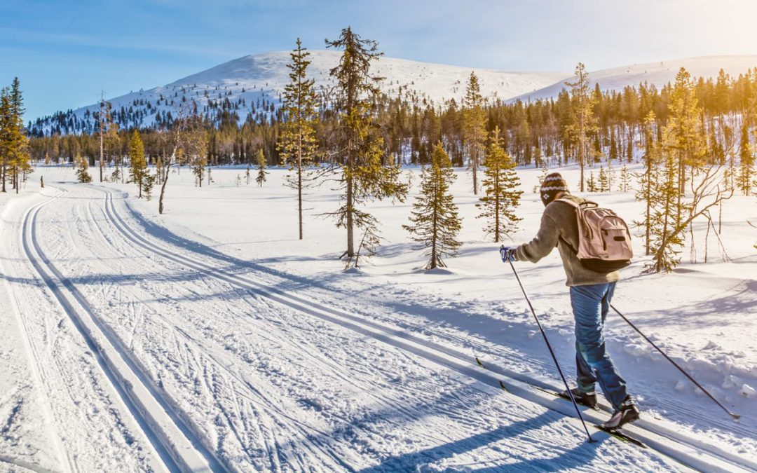 Cross-country skiing in Krkonose
